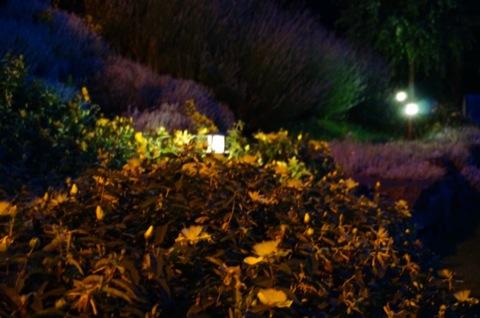 Recomendaciones iluminaci n exterior archivos balizas jard n for Balizas jardin