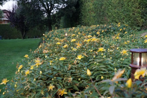 Farolas de jard n elemento imprescindible en tu zona exterior - Farolas de jardin ...