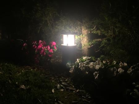 Recomendaciones iluminaci n exterior archivos balizas jard n for Balizas iluminacion exterior